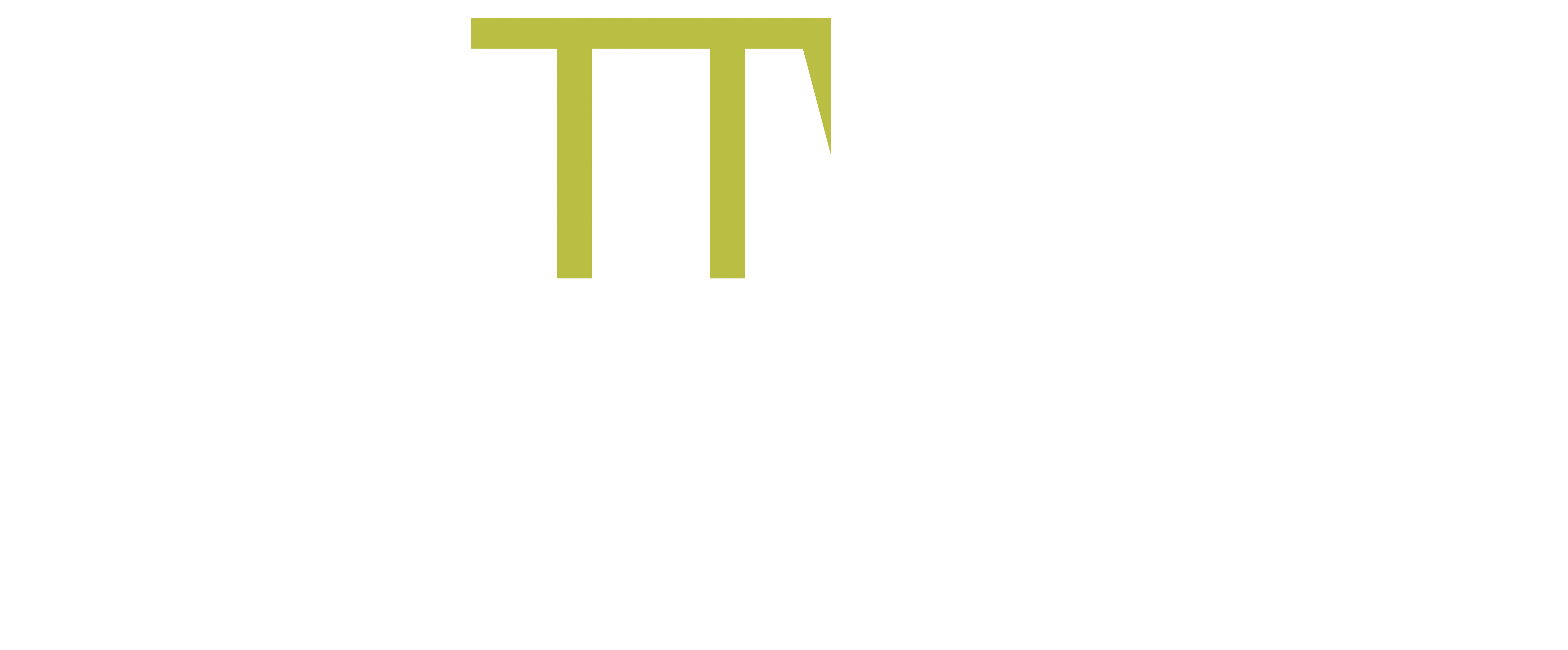 The Training Wizard